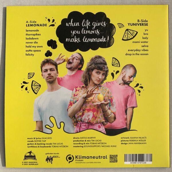 Lemonade_VINYL_back